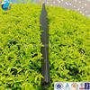 Different shape carbonfiber fishing speargun /newest poeudcts carbon fiberbarrel for fishing spear gun