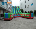 FEILE TOYS giant inflatable slide, giant inflatable water slide for summer, inflatable jumping slide for sale