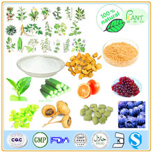 GMP Manufacturer High Quality &100% natural grape seed oil extract