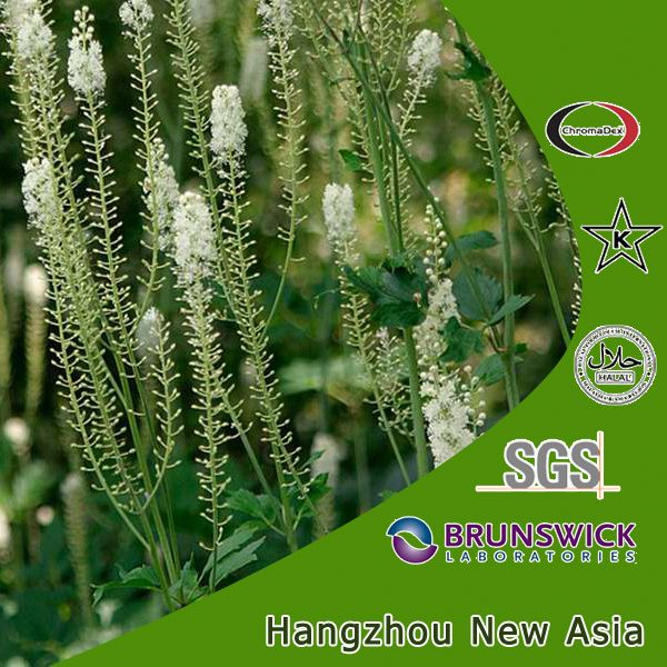 High Quality Cimicifuga Racemosa Extract