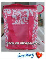 Cute Promotion Cooler Bag /Used For The Picnic