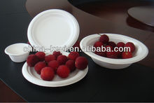 wholesale from China high quality disposable paper plate