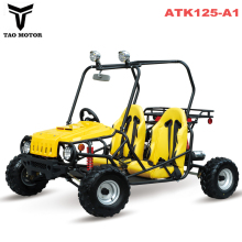 Tao Motor Mini Jeep 2 seater Go Kart ATK125-A1 with EPA ECE