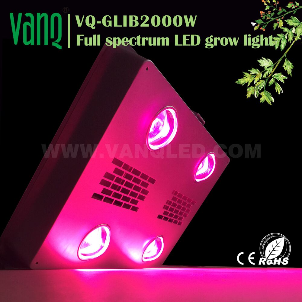 1200W COB led grow light to replace halogen lamp 1000w 125mm
