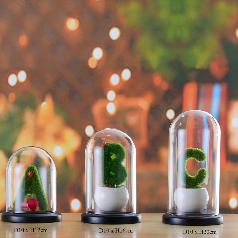 small-glass-dome--bell-jar.jpg