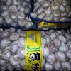 /product-detail/chinese-new-fresh-pure-white-garlic-normal-white-garlic-for-africa-60833978597.html