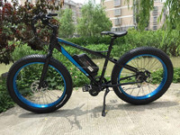 two seat mid drive electric bike with 2000w motor
