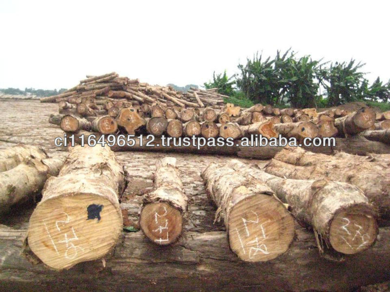 TEAK wood/timber from Cote D'ivoire