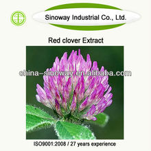 red clover powder extracts