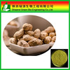 Natural Plant Extract Luteolin 98%/High Quality Arachis Hypogaea Extract Luteolin
