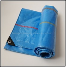 Shandong Plastic Tarpaulin Factory With High Quality