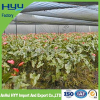 China manufacture supply agricultural greenhouse used green sun shade net