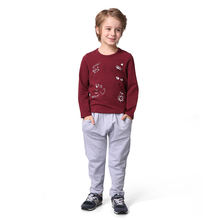Autumn and Winter sport suit children boy clothing sets
