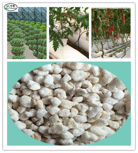 White expanded perlite price for hydroponic