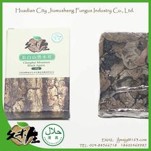 Next-generation organic green food suitable price striped white back black fungus mushroom