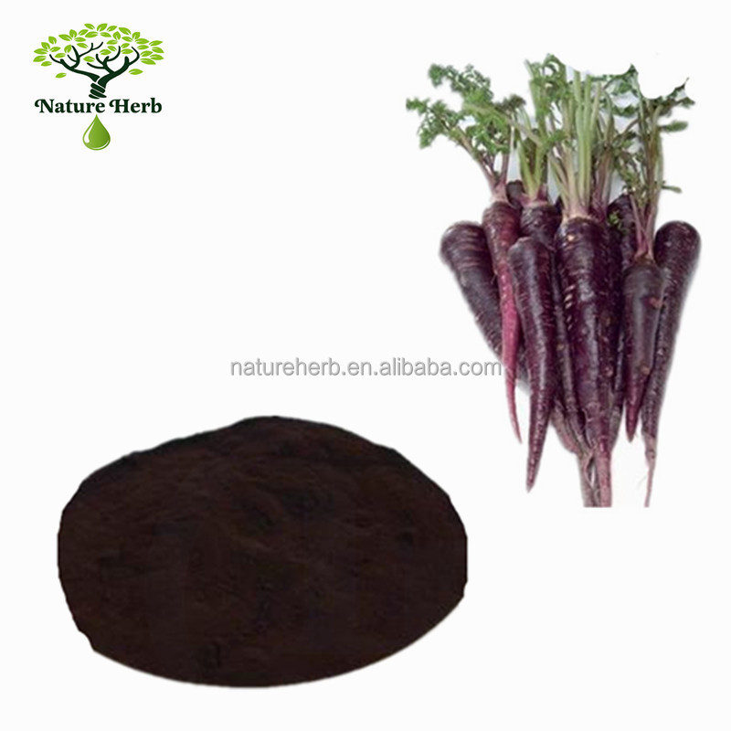 High Quality Black Carrot Extract Powder 8% Anthocyanin Price