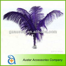 Purple Ostrich Feather for Wedding and PARTY Decoration