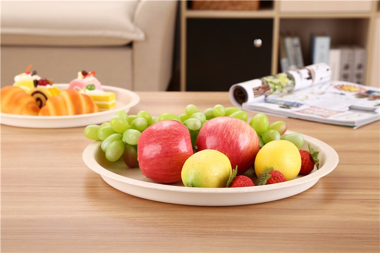 Restaurant Plates Vegetable Plastic Custom Melamine Plates Picture
