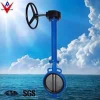 PN10 PN16 Long Stem Wafer Type Gear Butterfly Valve