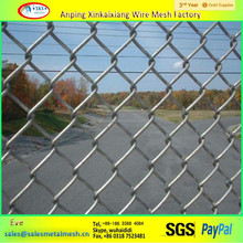 Anti rust High zinc coating High quality 50*50mm Vinyl coated chain link fence