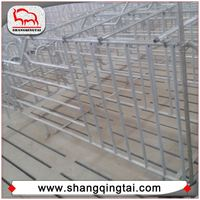 Golden Supplier Galvanized Pig Gestation Crates Stall For Sow Rearing Farm
