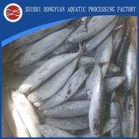 Seafrozen Frozen Skipjack frozen bonito tuna from china