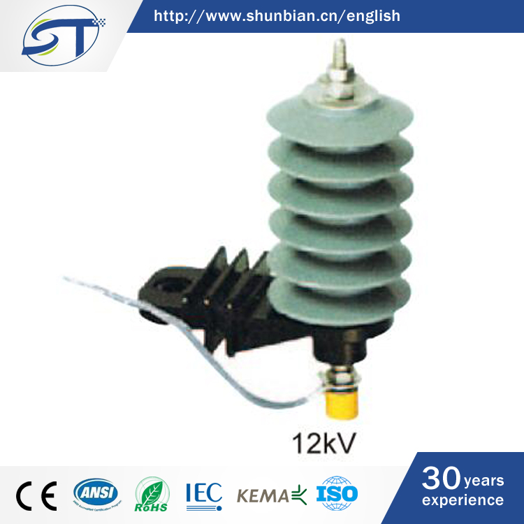 SHUNTE New Design Cheap Outdoor 12KV Procelain Polymer Lightning Protecting Arrester