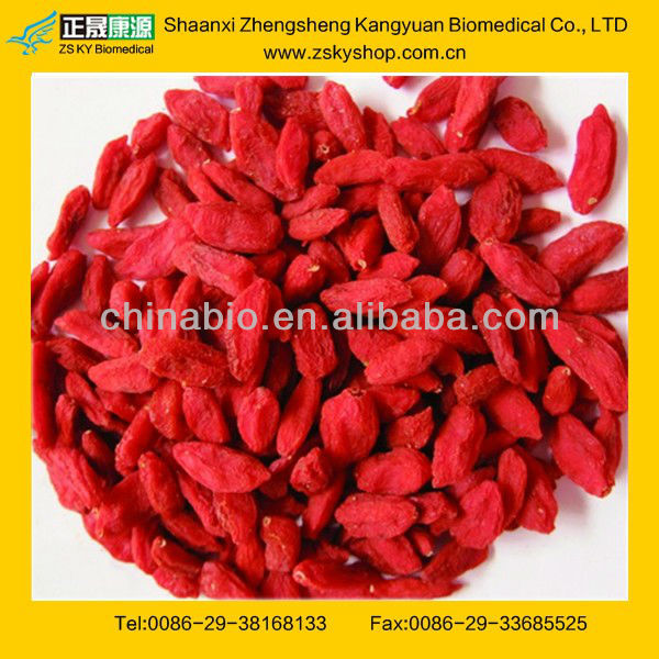 GMP manufacturer supply high quality 100% natyral Ningxia Wolfberry Sun Dried Goji Berry