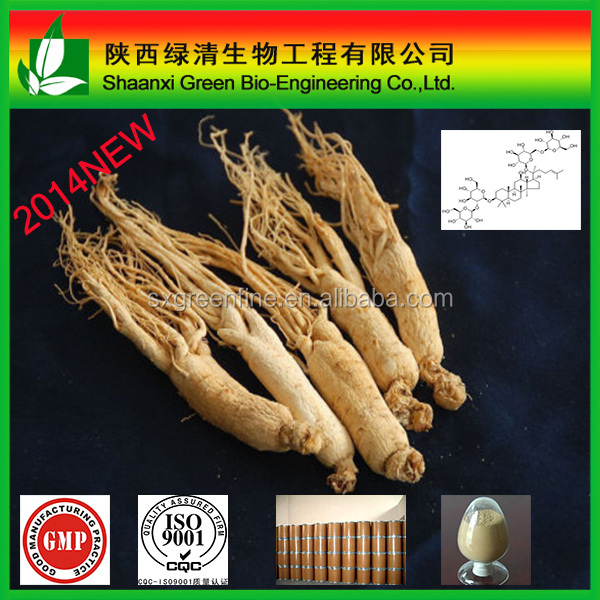 Natural ginseng root extract from Red ginseng, Panaxoside powder Ginsenoside 80%