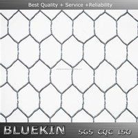 Hexagonal Hole Shape and Fence Mesh Application Hexagonal Wire Netting