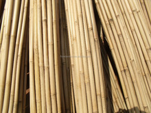Bamboo Canes For Tree Guards,26-28mmx295mm