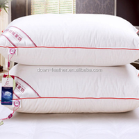 China new design polyester feather vacuum packed luxury pillow for wholesale