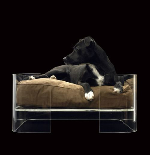 Modern Design Square Clear Acrylic Pet Bed Perspex Bed for dogs and cats