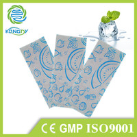 Hot selling product chinese traditional natural herbal cooling gel patch mini ice packs