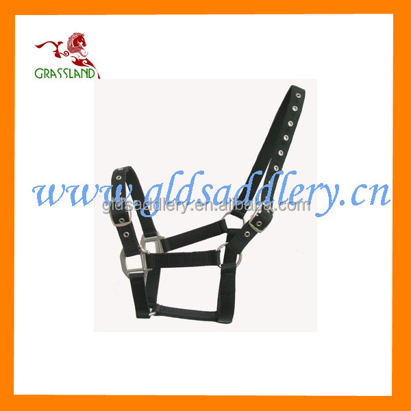 Top Quality PP Webbing Horse Tack