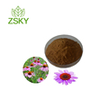 GMP Manufacturer Supply Bulk Echinacea Purpurea Herb Extract Powder/Cichoric Acid