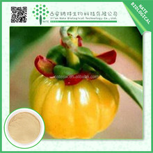Alibaba China Supplier herbal extract/garcinia cambogia p.e