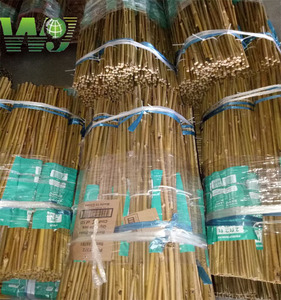 Wy-J124 With cheap price high quality raw shape poles natural bamboo Tonkin canes