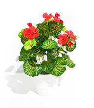 Beautiful Artificial Flower Mini Bonsai Leaves With Green Leaves