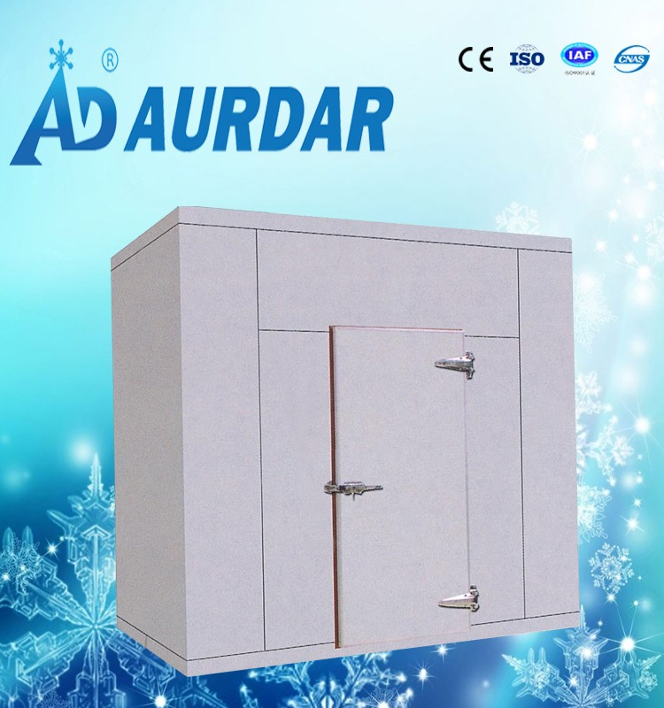 project cost cold storage room with door lock