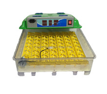Mini incubator broiler hatching eggs for sale poultry hatcheries incubator