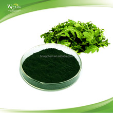 Factory Supply Top Quality Pure Extract Powder Chlorophyll 99%