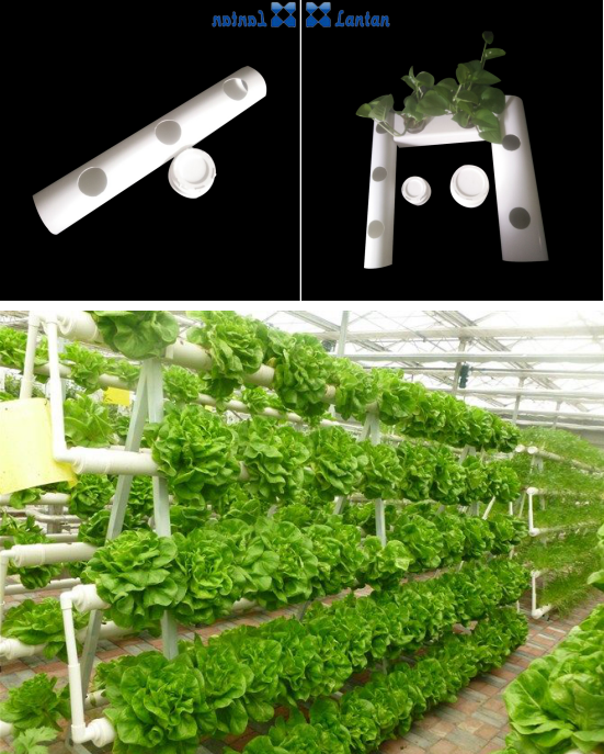 Design Widely application hydroponic NFT plant system PVC pipe