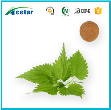natural product nettle leaves extract powder sitosterol powder