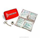 EM55011 Car first aid survival kit Euro kit