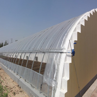 Economical Solar Greenhouse For Agriculture