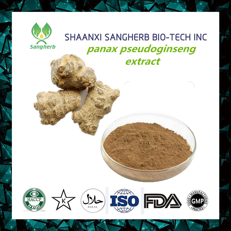 100% pure panax pseudoginseng extract notoginseng triterpenes by HPLC