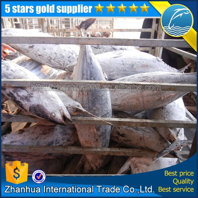Wholesale skipjack tuna price, china in bulk skipjack tuna export