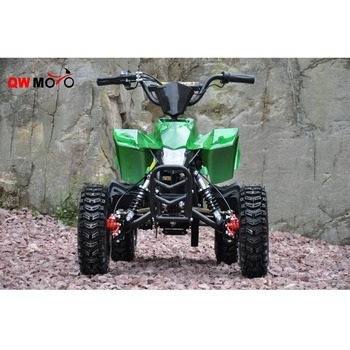 500W 800W Electric QUAD ATV for Kids Mini Bike Sports Style
