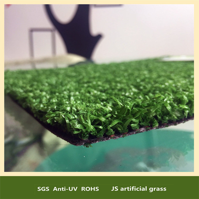 12mm natural looking turf best grass for cats